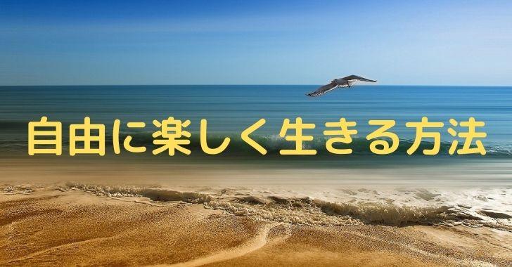 ビーチとカモメ