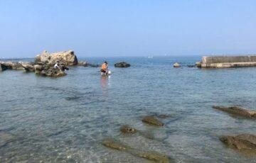 葉山一色海岸の写真(8月28日)